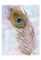 Peacocl Feather 2 Fine Art Print
