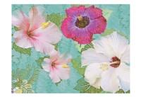 Hibiscus Flowers Fine Art Print