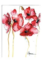 Amapola Roja 3 Fine Art Print