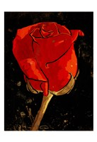 Golden Rose Fine Art Print