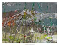Mountain Wildflowers II Framed Print