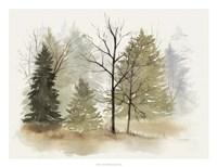 In the Mist I Framed Print
