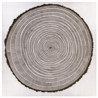 Tree Theory Fine Art Print