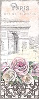 Paris Roses Panel VII Fine Art Print