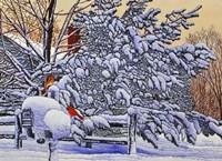 Cardinals At The Mailbox Fine Art Print