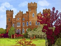 Ireland - Clonyn Castle, Co Westmeath Fine Art Print