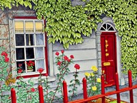 Ireland - Red Fence, Adare Co Limerick Fine Art Print