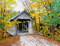 Vermont Bridge In Fall Fine Art Print