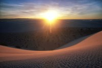 Curved Dune Spot Removed Fine Art Print
