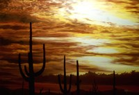 Cactus Sunset Fine Art Print