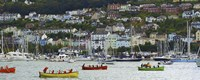 Dartmouth Regatta Fine Art Print