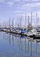 Marina Reflections Fine Art Print