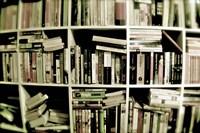 Books On Shelves Fine Art Print