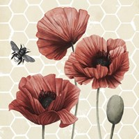 Poppy Buzz I Framed Print