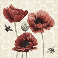 Poppy Buzz II Framed Print
