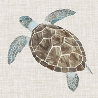 Sea Turtle II Fine Art Print