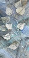 Silver Leaves I Framed Print