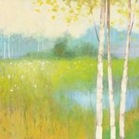 Spring Fling II Framed Print