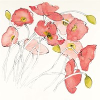 Black Line Poppies II Watercolor Fine Art Print