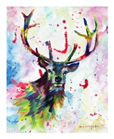 Color Stag Fine Art Print