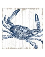 Seaside Crab Fine Art Print
