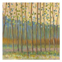 Through Pastel Trees Fine Art Print