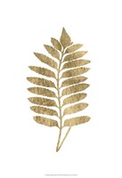 Graphic Gold Fern III Fine Art Print