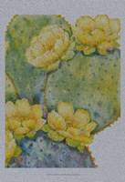 Cactus on Silver II Framed Print