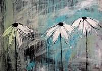 Three Fleurs Blanches Fine Art Print