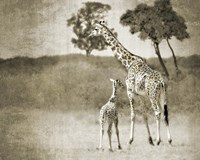 Baby and Mother Fine Art Print
