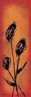 Poppies Will Make Them Sleep Fine Art Print