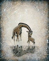My Love for You - Giraffes Fine Art Print
