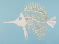 Longnosed Butterfly Fish Bones Fine Art Print