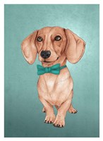 The Wiener Dog Fine Art Print