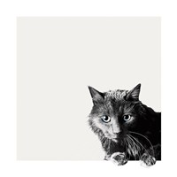 Inquisitive Fine Art Print