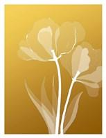 Floral Silhouette 6 Fine Art Print