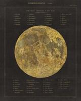Astronomical Chart I Fine Art Print