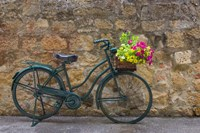 Green Bicycle Fine Art Print