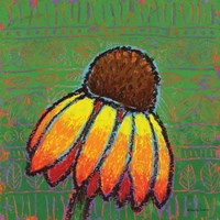 Coneflower Fine Art Print