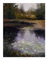 Oregon Water Lilies Fine Art Print