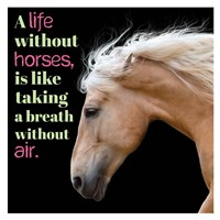Horse Quote 7 Fine Art Print