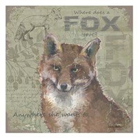 Where Does a Fox Trot Framed Print