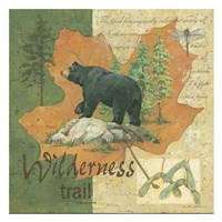 Wilderness Bear Framed Print
