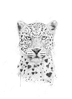 Lovely Leopard Fine Art Print