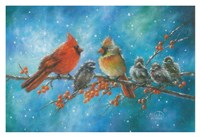 Cardinals Family Fine Art Print