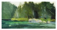 Lily Pond & Dark Woods Fine Art Print