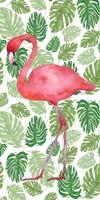 Tropical Flamingo II Framed Print