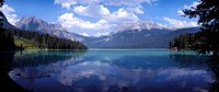 Emerald Lake Reflections, Alberta, Canada Fine Art Print