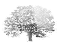 Silver Foil Elephant Tree - Metallic Foil Fine Art Print