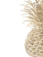 Pineapple Life IV Fine Art Print